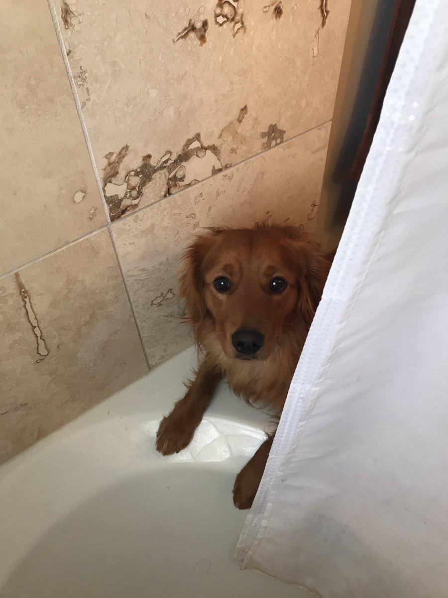 Clark en el baño