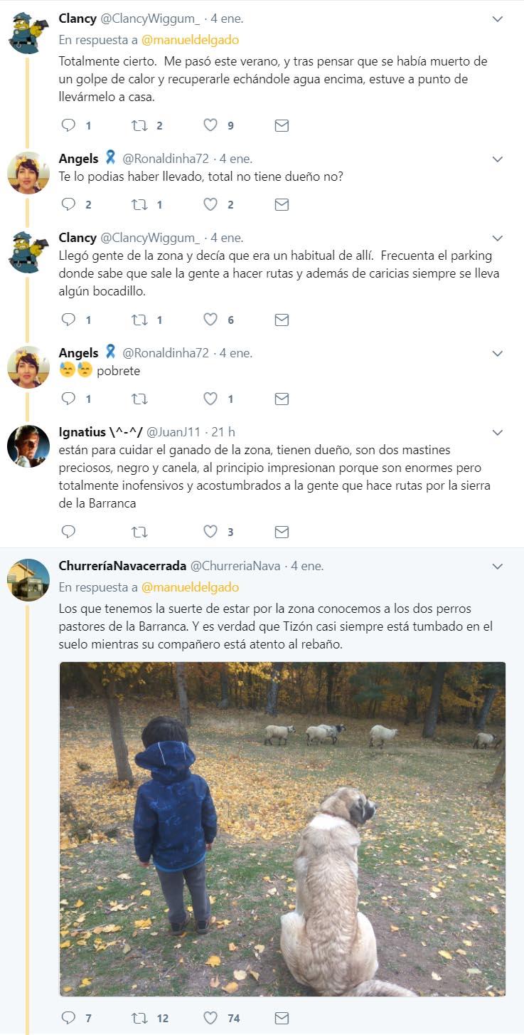 Comentarios de Twitter