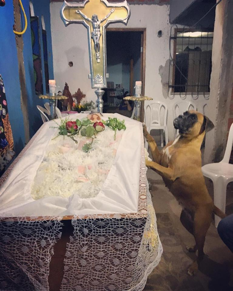 Belinha se despide de Maria