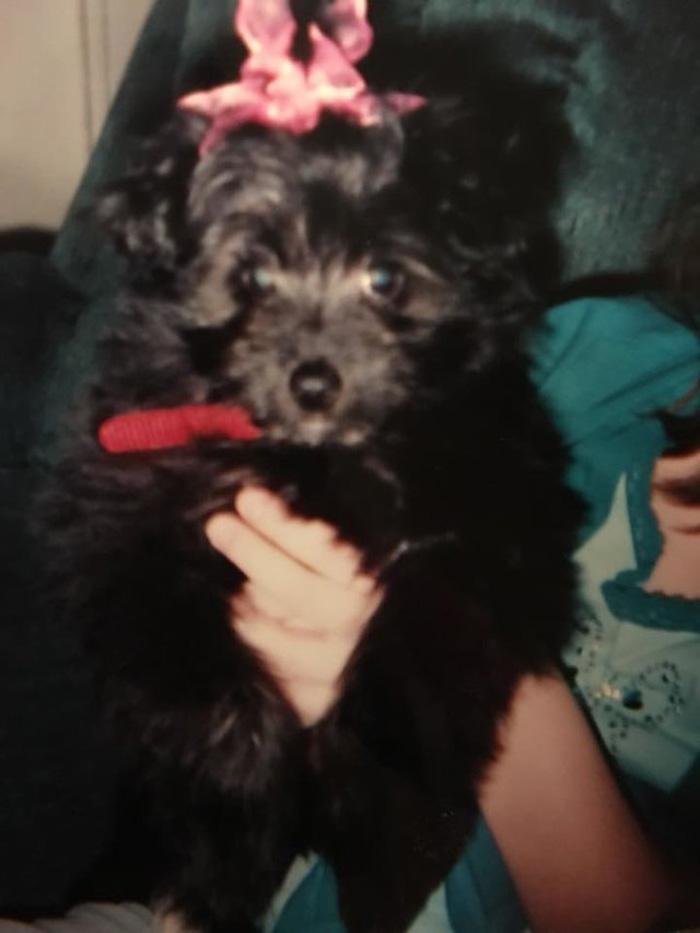 Chloe antes