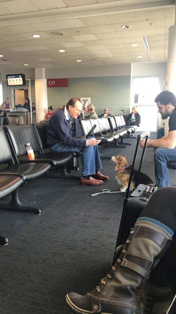 Corgi reconforta hombre en aeropuerto
