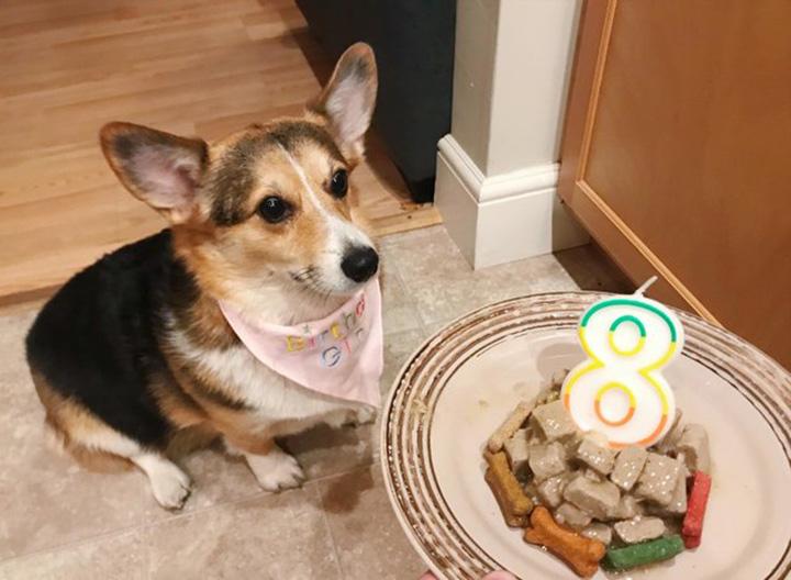Cumpleaños de Cora