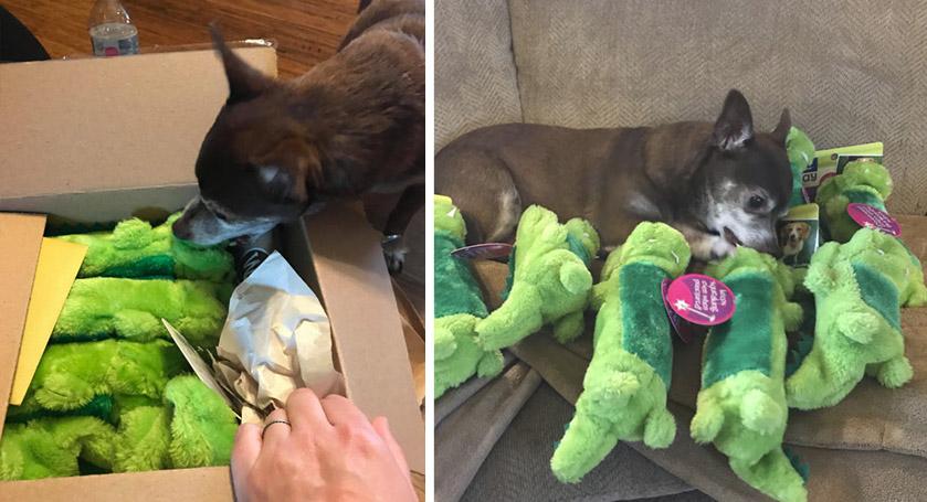 Descontinuaron su juguete favorito pero recibe gran sorpresa