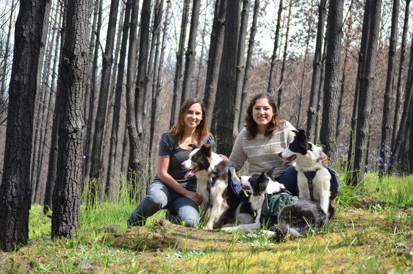 Francisca, su hermana y los perros