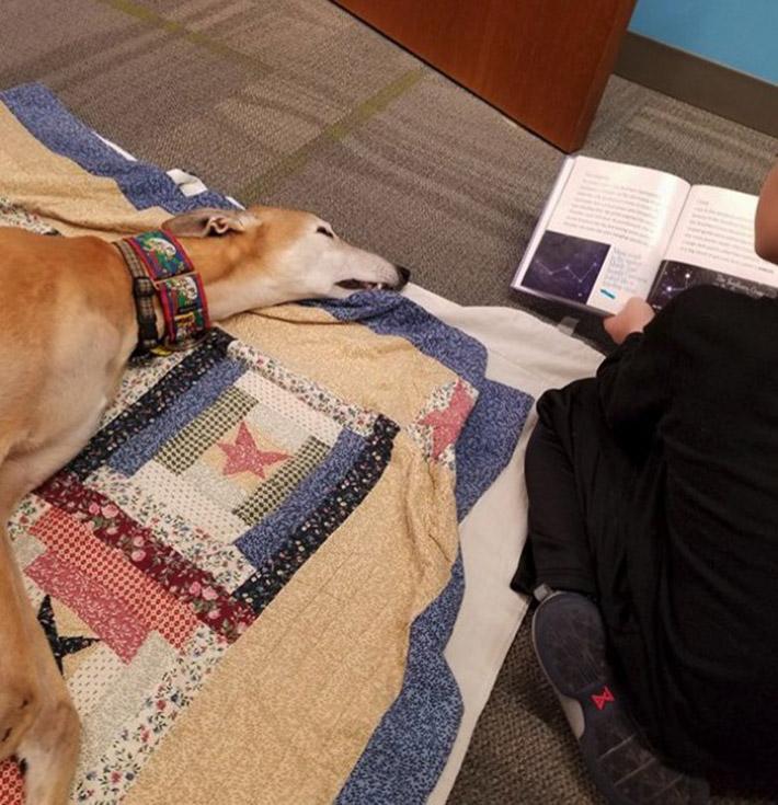 Niños leen a perros