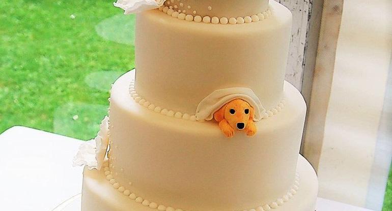 Parejas incluyen perros en su boda