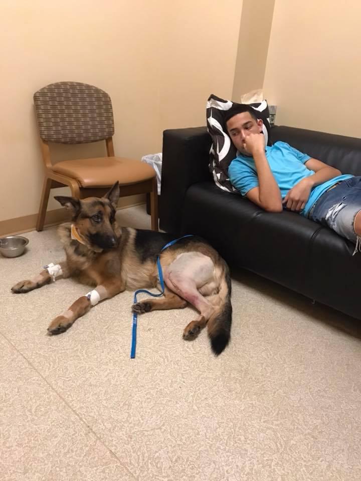 Rex y Javier en el hospital