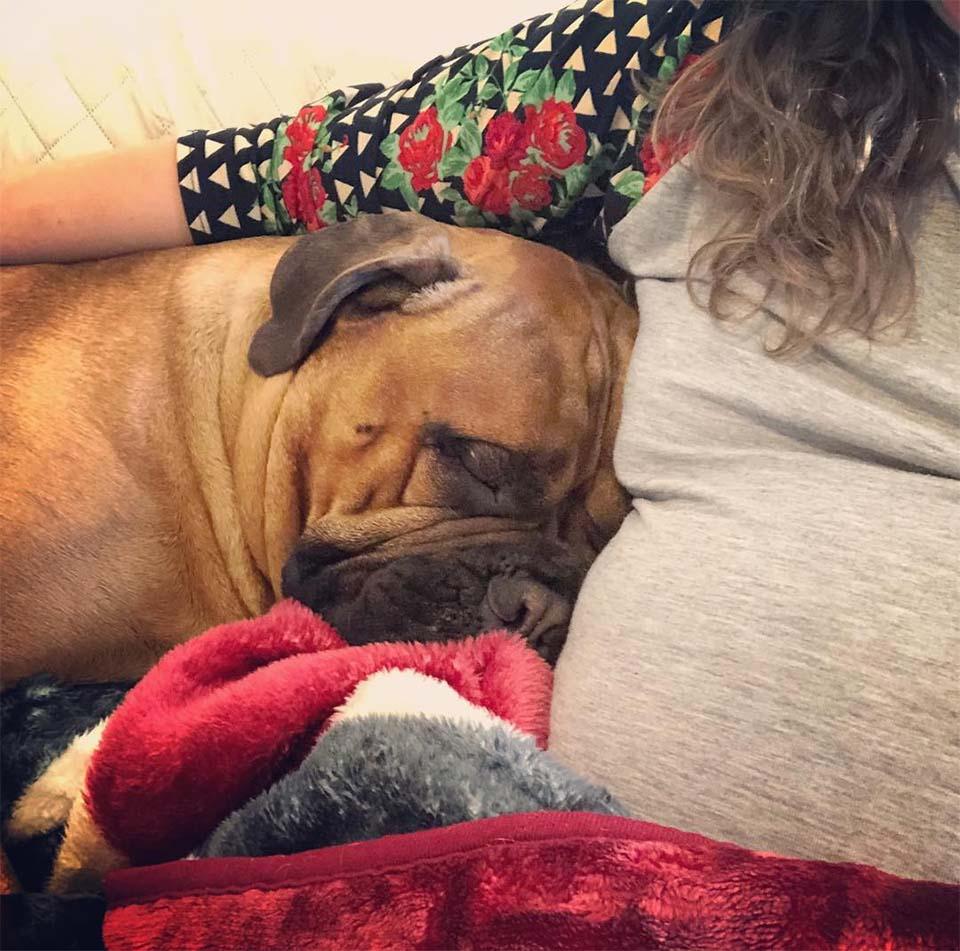Brutus y Bonnie