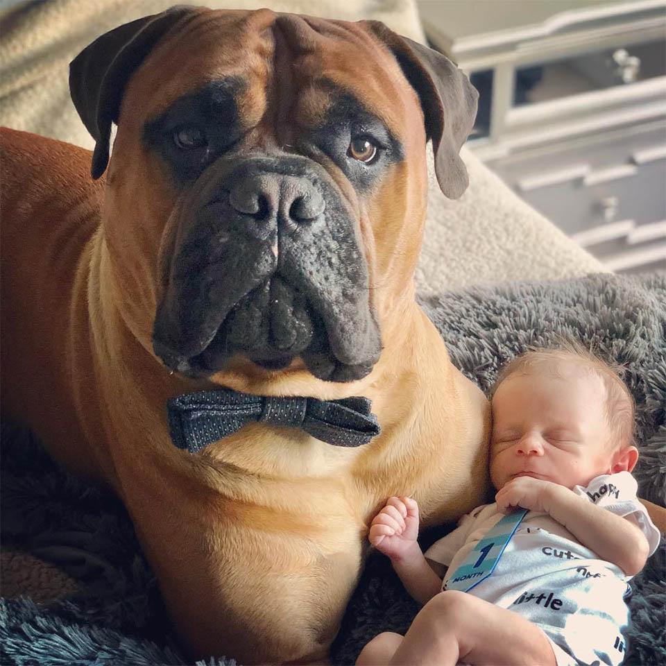 Brutus y Kayden felices