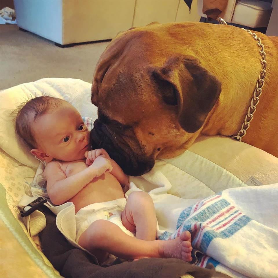 Brutus y el bebé