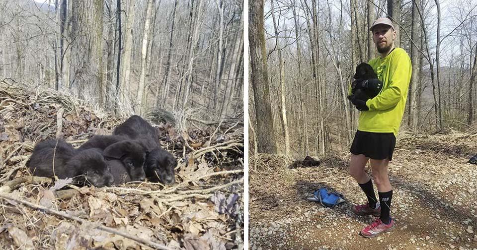 Corredores rescatan 5 cachorros en el bosque