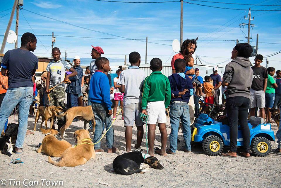 Fila para atender animales