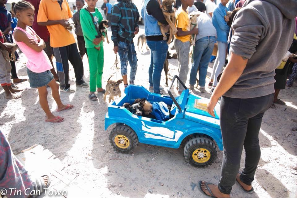 Jeep con perros