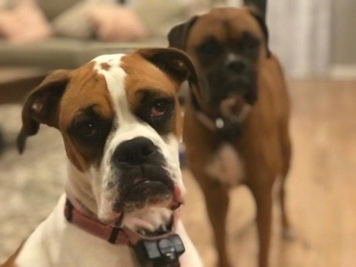 Lexi y su hermana