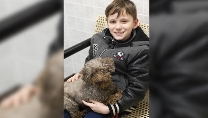 Niño adopta perro más viejo del refugio
