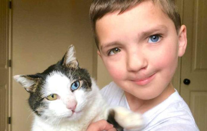 Niño y gato rescatado son inseparables