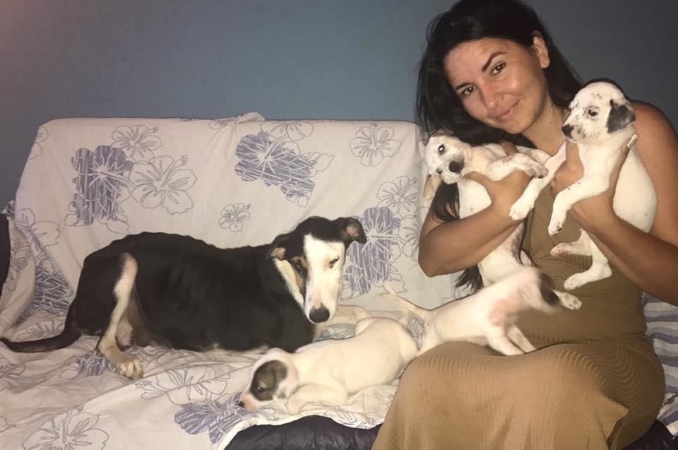 Rescatista con los perritos