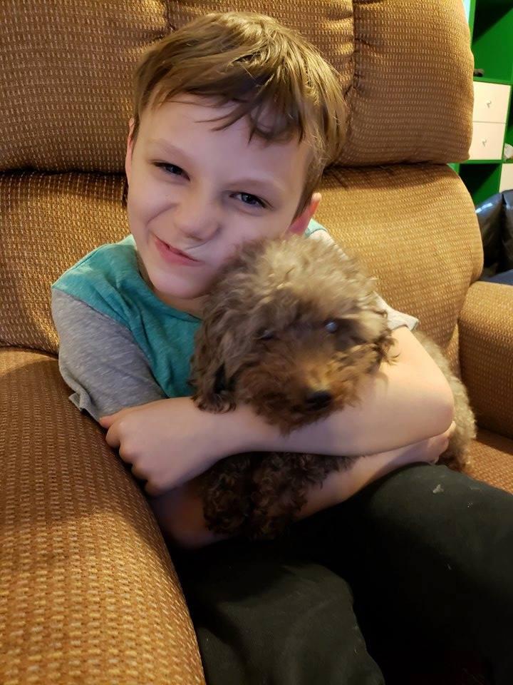 Tristan adopta perro viejo
