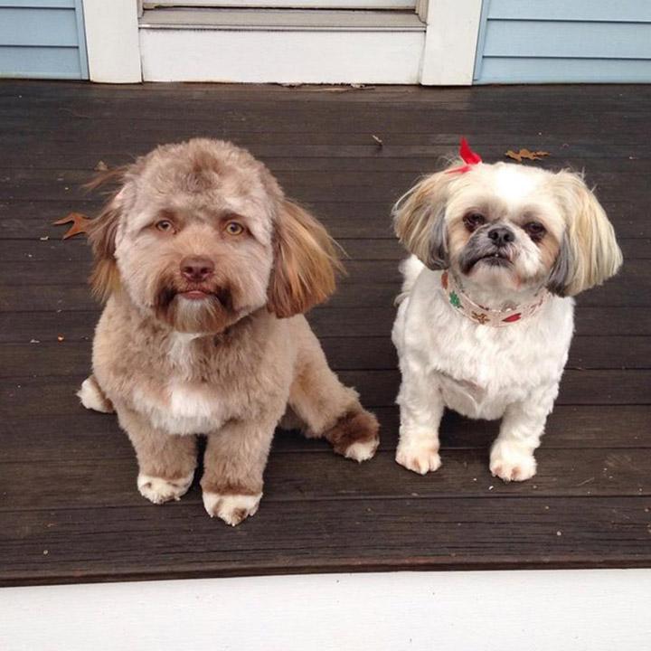 Yogi y su amiga
