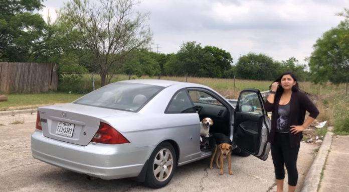 Cruel mujer filmada mientras abandona a sus perros