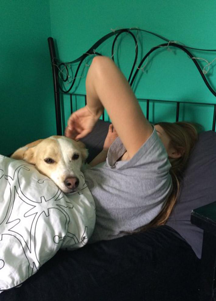 Finn es buen perro