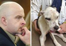 Hombre maltrató a un perro y es condenado a 10 años de prisión