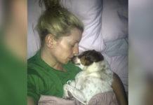 Perro duerme cara a cara con mamá todas las noches