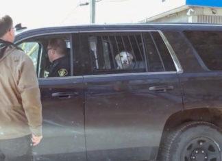 Perro es arrestado por ser un chico malo