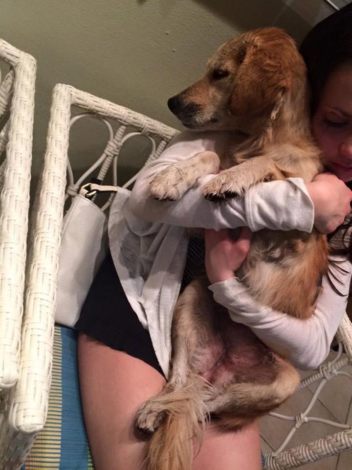 Rosie rescatada
