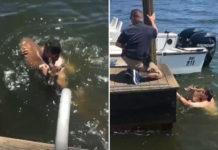 Hombre salta al lago para salvar a un ciervo