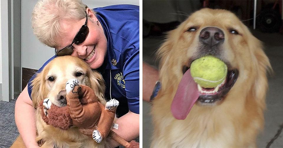 Mujer invidente ve perro guía por primera vez