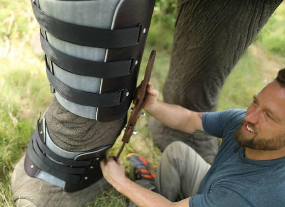 Derrick y un elefante