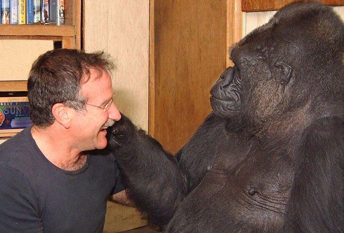 Koko y Robin Williams