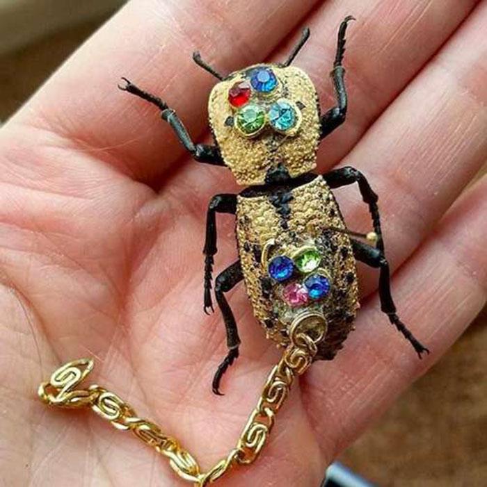 Escarabajo convertido en joyas
