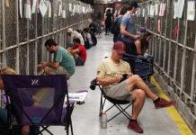 Personas acompañaron a los perros de un refugio durante fuegos artificiales