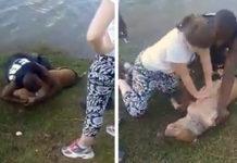 Personas ayudan perro que se estaba ahogando