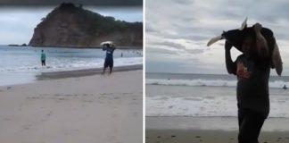 Cazadores furtivos roban tortugas marinas de una playa en Nicaragua
