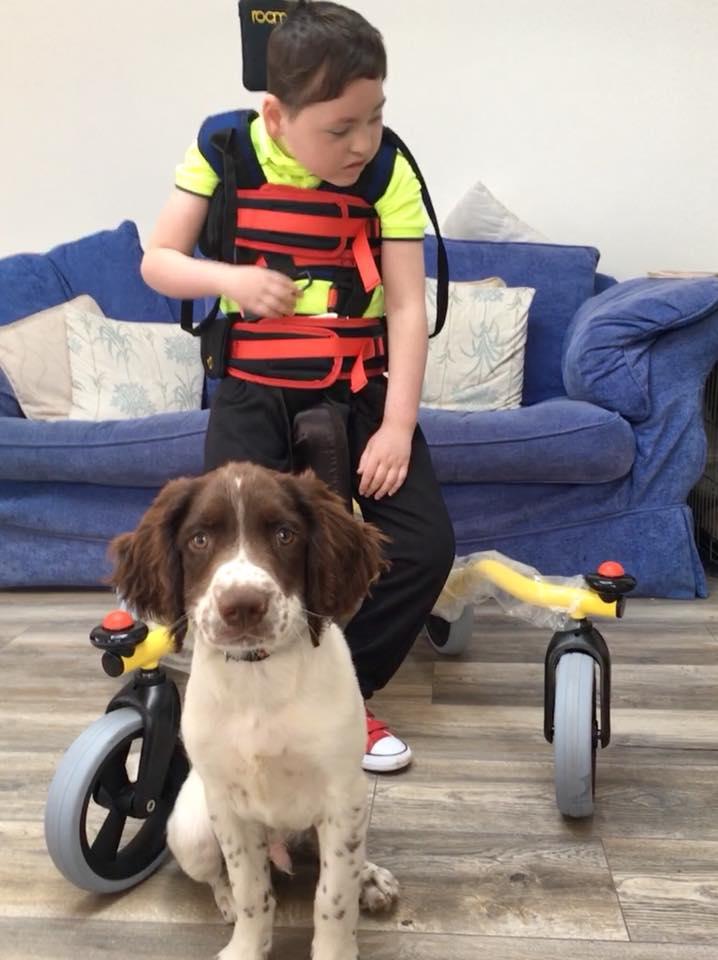 Hugh y su pequeño perro