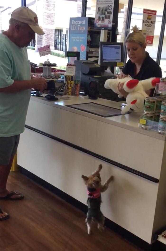 Lucy espera su juguete