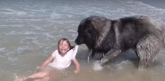 Matyas rescata niña
