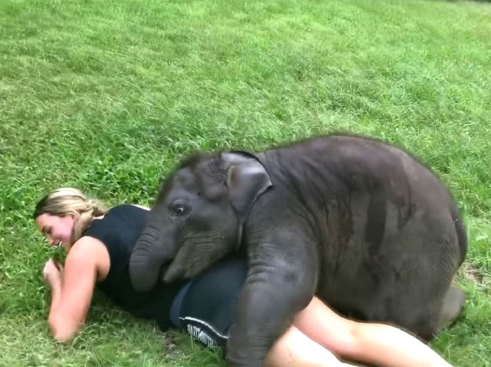 Suki abraza a turistas