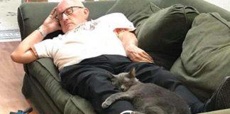 Anciano voluntario siempre termina durmiendo con los gatitos del refugio