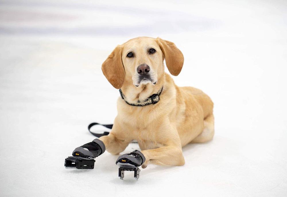 Benny y sus patines