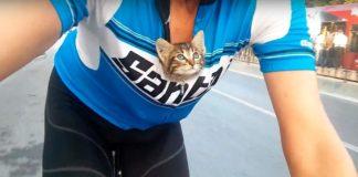 Ciclista encuentra gatito y lo lleva en su camiseta