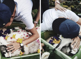 Joven se despide de su amado perro