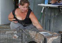 Mujer arrestada después de salvar 27 animales del huracán