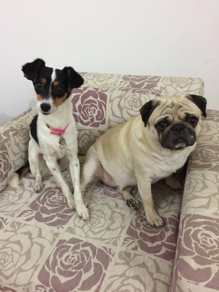 Penelope y su hermano