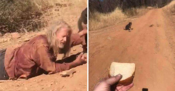 Perro salvó la vida de su padre lesionado en un camino remoto