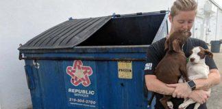 Cachorros abandonados en la basura se alegraron de ser rescatados