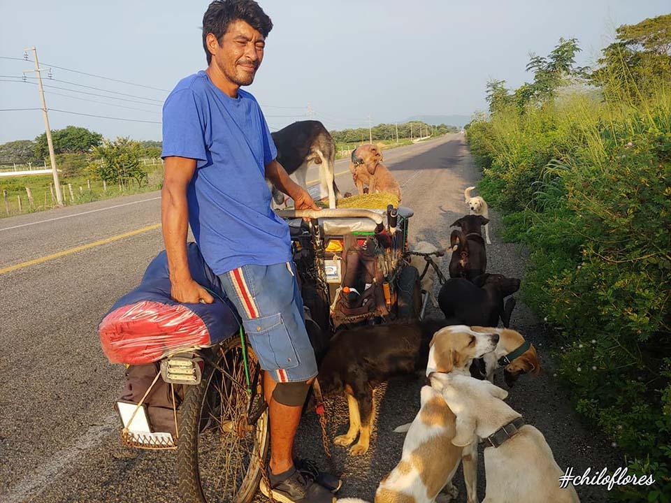Edgardo recorre las calles rescatando perros